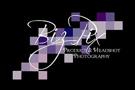 BizPix Logo Black option 2.jpg