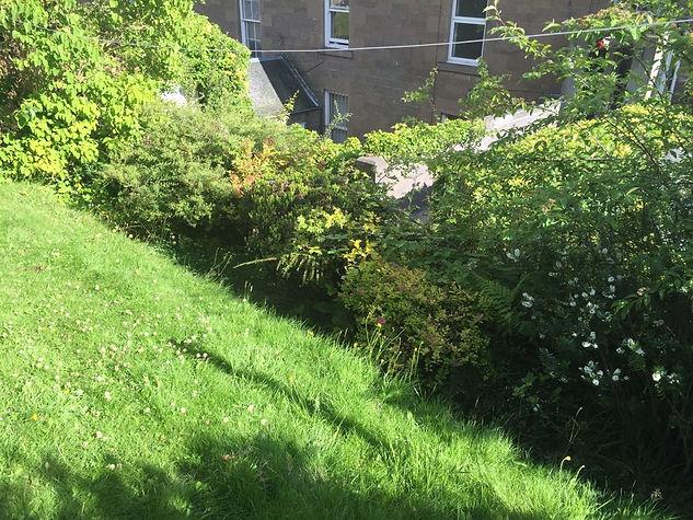 Sloped Garden