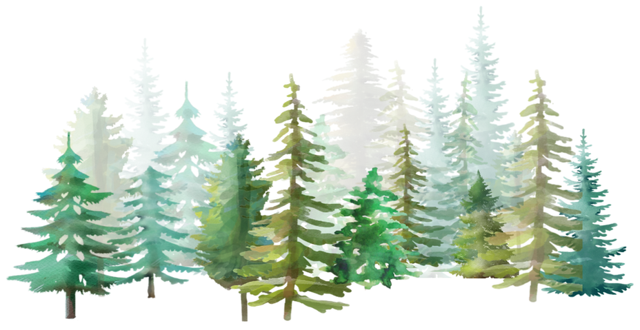 full trees.png