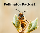 pollinator pack2.png