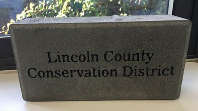 Picture of LCCD's engraved brick/example