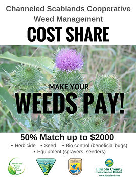 "Thisles with the message ""Make your Weeds Pay"""