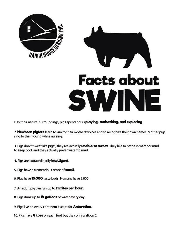 Swine-FactSheet.jpg