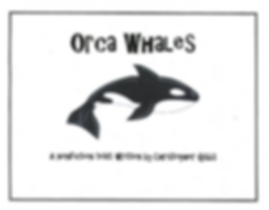 orca non1.png