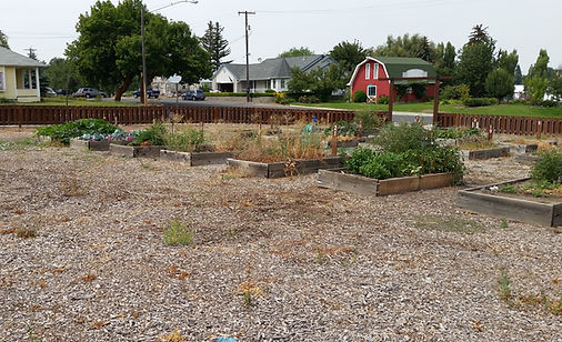 Picture of the old community garden before renovation