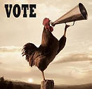Picture of a rooster with a megaphone telling people to vote