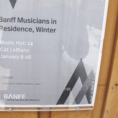 Cat at the Banff Centre