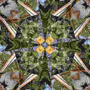 The word kaleidoscope brings back old memories of a long cylindrical tube with colored pieces of glass or pebbles at the bottom and a series of mirrors which give an infinite number of designs each time the tube is rotated. Known in ancient Greece, the kaleidoscope was reinvented by Sir David Brewster in 1817. The kaleidoscope can actually be used as a metaphor for life: with each twist in the cosmic universe we will experience a change in the settings of our lives. We adapt and live with the change as we adjust our vision to the new pattern of life set before us. Those fortunate few out there who know me well, know that a dichotomy exists within me. On the one hand, I am this very analytical, highly organized, very planned individual who runs a very tight ship, whose course is always set to accomplishment and success. On the other hand, I tend to dislike change. A lot. But when unexpected change happens, I deal with it in a smooth, no-bumps-showing way. I think my problem with change stems from the planned, sustained change that allows us to over-analyze and stew with what is coming up as we wait for its implementation. The reality is that the time spent fretting about change is far longer and more painful than actually going through the change itself. So my advice to self is to just hold your breath and jump in. The ride will be short and the waters smooth on the other side of change. Just do it!!