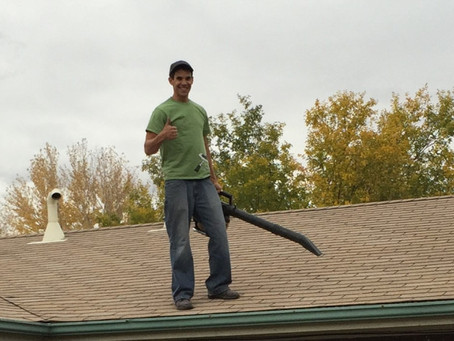 blowing dead leaves from the gutters