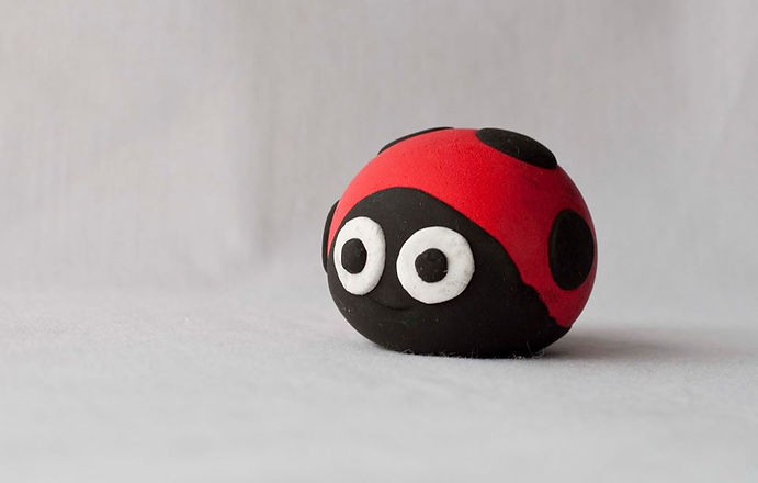 LadybirdPhotoBefore.jpg