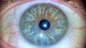 Transformando vidas através dos olhos