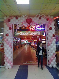 арка 14 февраля