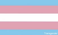 18. Transgender.png