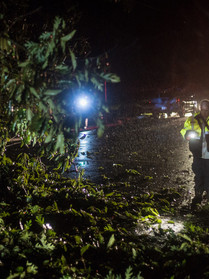 An Asheboro Fire Department member inspects a fallen tree that downed power lines and blocked Kildare street in Asheboro, N.C. on Saturday, September 15. Much of Randolph county experienced high winds and flash flooding as result of Hurricane Florence. (Photo by Nathan Burton)