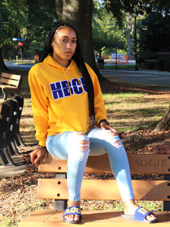 HBCU Slide Co,