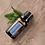 Thumbnail: Peppermint (Mäta pieporná)