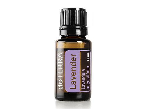 Lavender (Levanduľa)