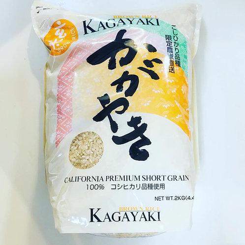 Kagayaki Brown Rice