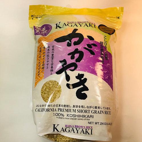 Kagayaki Haiga Rice