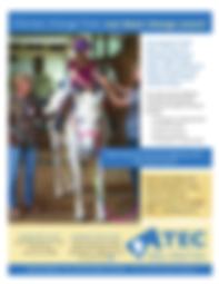 TEC General Info Promo Flyer