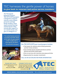 TEC WITH VETS Promo Flyer