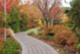 Image of a brick pathway thru autumn trees.