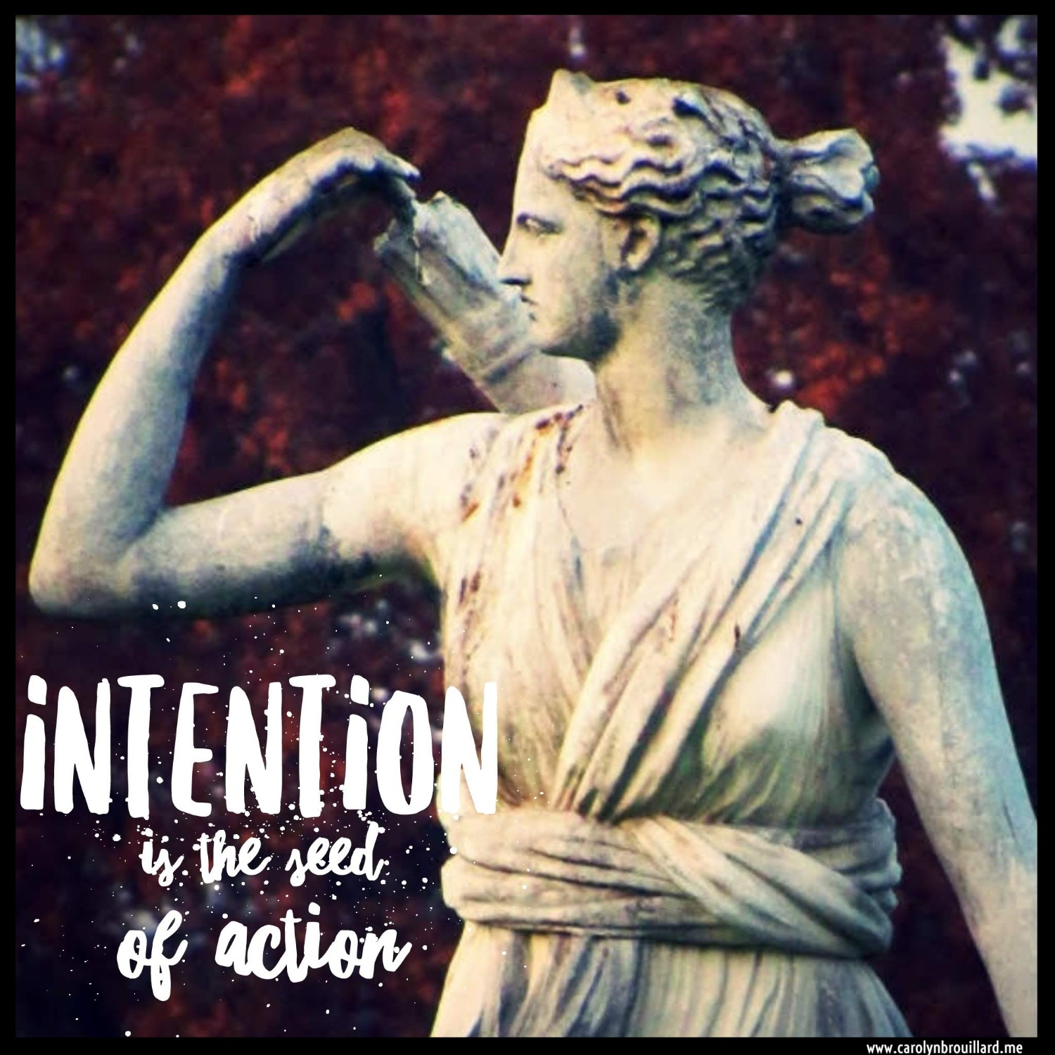 Intention is the seed
