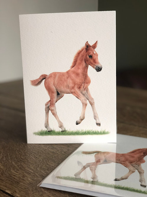 'Spring Time' Greetings Card