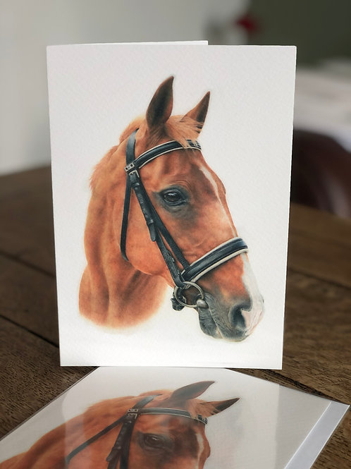 'Hoolie' Greetings Card
