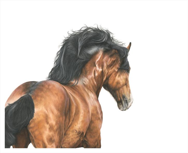 'Horse Power' £1950