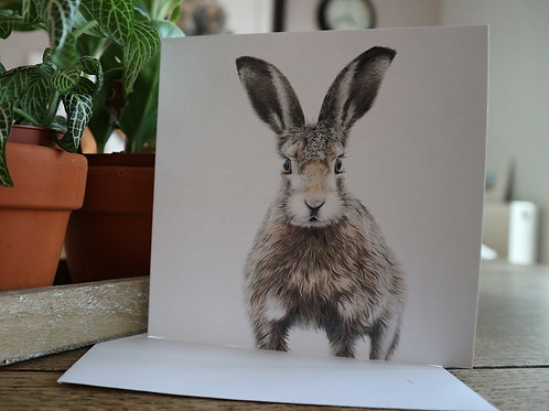 'Hop To It!' Greetings Card