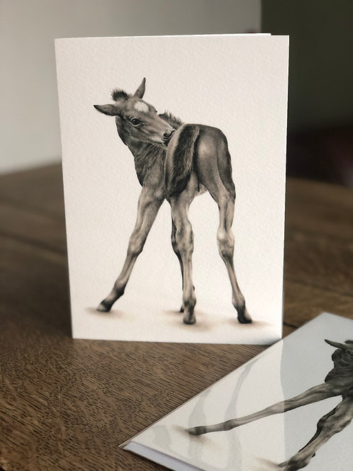 'That's The Spot' Greetings Card