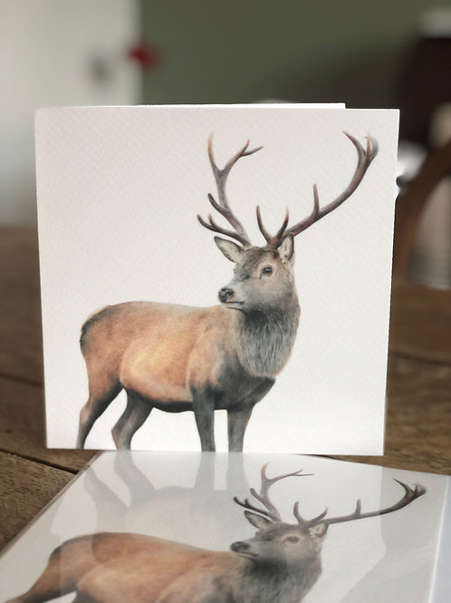 'The Monarch' Greetings Card