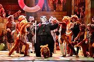 NMTC CATS Newcastle Theatre Royal