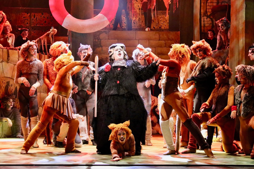 Newcastle Musical Theatre in Andrew Lloyd Webber's CATS