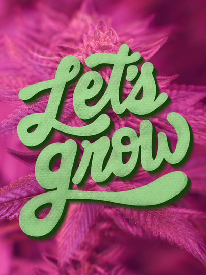 Let's Grow - 2020