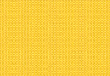 honeycomb-01.jpg