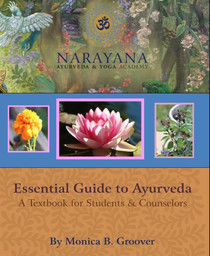 Preview- An Essential Guide to Ayurveda