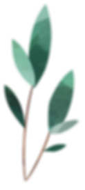 Plant_07.png