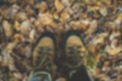 pexels-photo-284711.jpeg