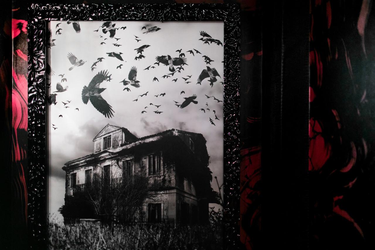 The_Unfound_Door_The_Curtis_Hotel_Elevat