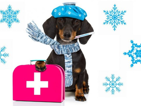 Hangover Cures: 5 Tips for a Headache Free Christmas
