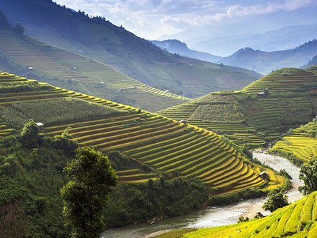 10 Best Things to See and Do in Vietnam