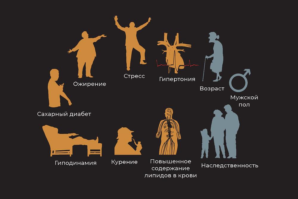Факторы риска атеросклероза