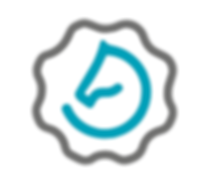 top Instructeurs logo.png