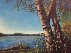 Three Birch Trees by the Water
