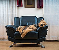 fabrica para sillones, fabrica para sofas