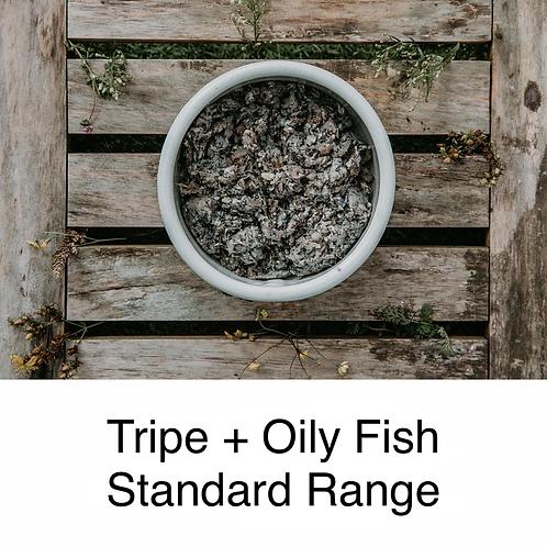 Tripe (Beef) + Oily Fish Standard