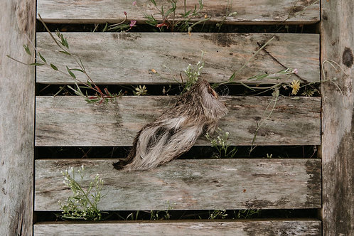 Hairy Venison/Deer Ear