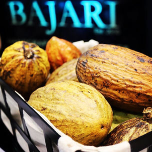 Bajari Chocolates Cacao Pods
